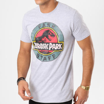 Tee Shirt Park Staff Gris Chiné