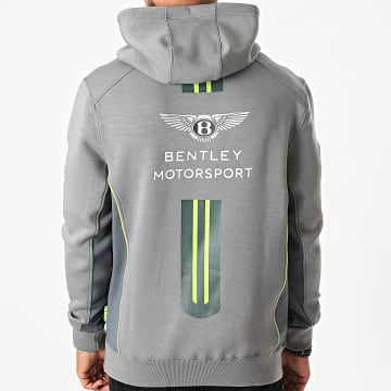 F1 et Motorsport - Sweat Capuche Team Gris
