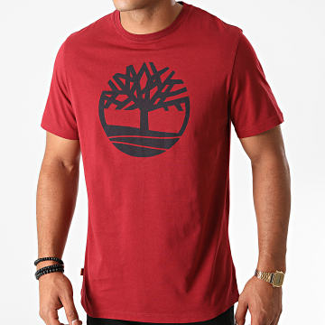 Timberland - Tee Shirt Kennebec River Brand Tree A2C2R Bordeaux