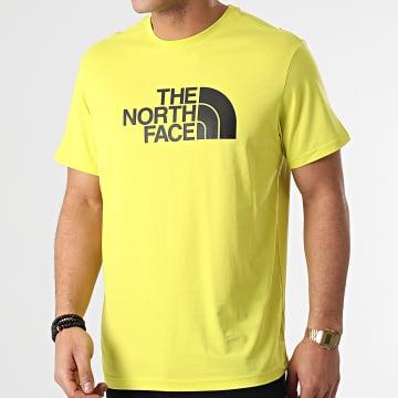 The North Face - Tee Shirt Easy A2TX3 Vert Clair