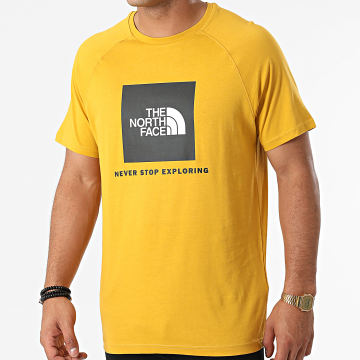 The North Face - Tee Shirt Raglan Red Box A3BQO Jaune Moutarde