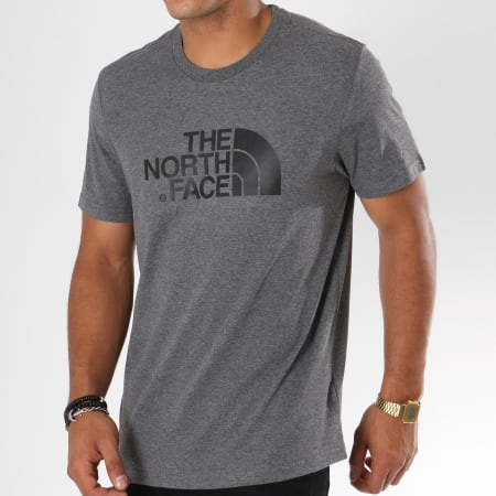 The North Face - Tee Shirt Easy Gris