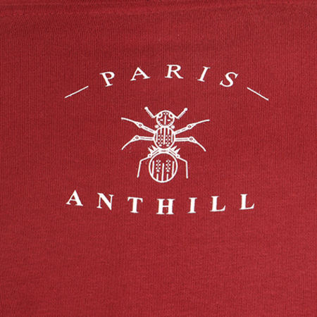 Anthill - Sweat Capuche Logo Bordeaux